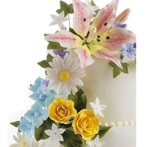 Pasta modellabile per fiori e personaggi
